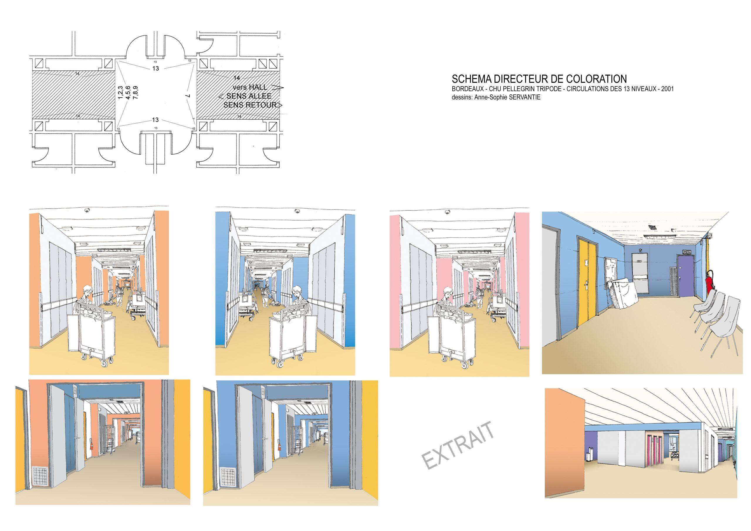 CHU Bordeaux Pellegrin-Schéma directeur de coloration