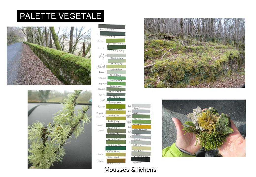Vallée de la Vèzère-constat chromatique- palette végétale